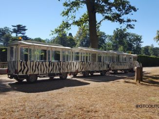 Туристический поезд в сафари-парке Туари
