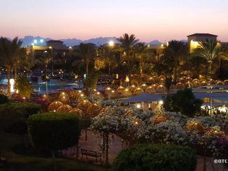Вечерний вид на территорию Desert Rose resort, Хургада, Египет